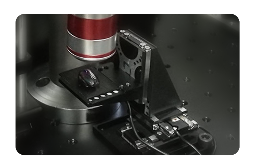 Customized Nanopositioners Ultraprecise Microscopy Stages