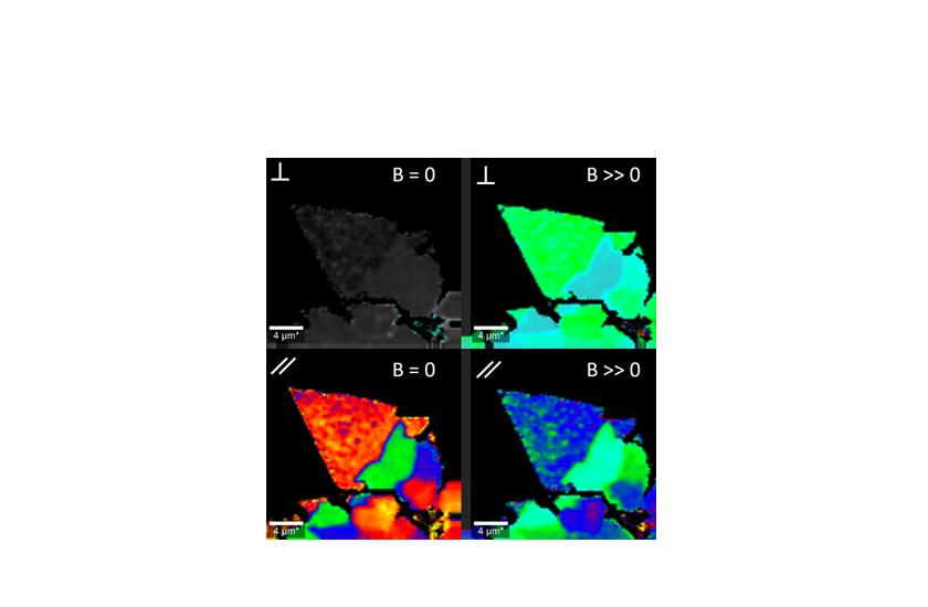 microscopes_confocal_cryoRaman_polarization_upgrade_keyvisual.png
