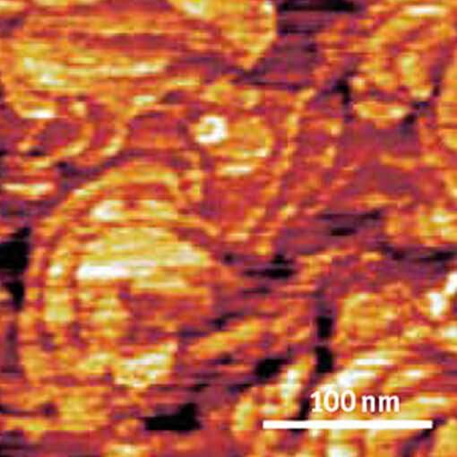 Conductive Tip AFM Measurements on Ruthenium ct   cryogenic atomic force microscope attoAFM
