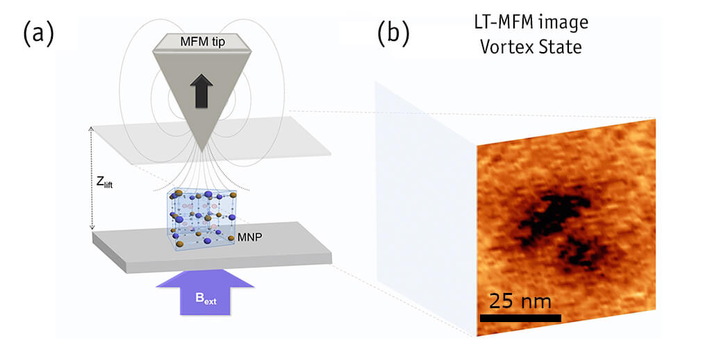 Switching the Magnetic Vortex Core in a Single Nanoparticle atomic force microscope attoAFM for MFM
