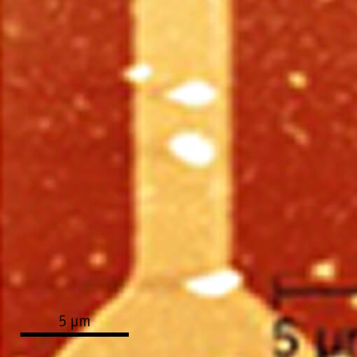 Visualization of Edge State in LPCMO Manganite Strip atomic force microscope attoAFM