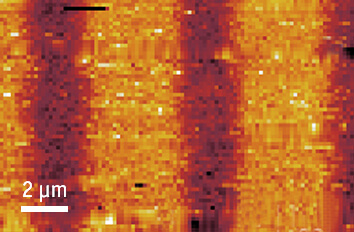 attoAFM III in Toploading Insert cryogenic atomic force microscope attoAFM III  mK application
